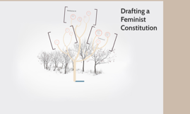 Drafting a Feminist Constitution