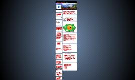 Copy of Strategi Implementasi Nilai-nilai Budaya Organisasi