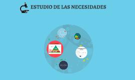 ESTUDIO DE LAS NECESIDADES