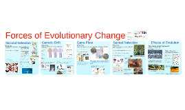 Copy of AP Bio- Evolution 2:  Evolutionary Forces