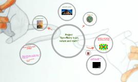 Copy of Projektas Simetrija