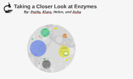 Taking a Closer Look at Enzymes