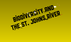 Biodiversity Loss and the St. Johns River