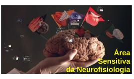 Área sensitiva da Neurofisiologia