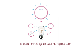 Effect of pH change on Daphnia reproduction