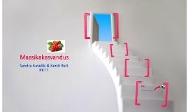 Maasikakasvandus