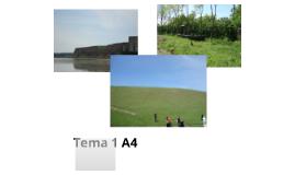 Tema 1 A4 Adina