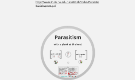 Parasitism with focus on plants as the hosts