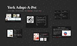 York Adopt-A-Pet