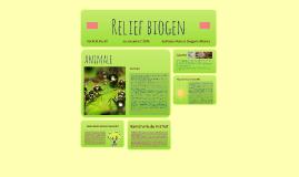 Relief biogen