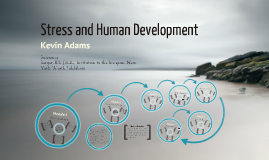 Stress and Human Development