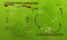 REGÍMENES CAMBIARIOS