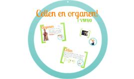 Organen en cellen 1vmbo