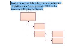 Anàlisi de necessitats dels recursos lingüístics i logístics