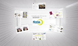 Identiteitsdag PicoSol