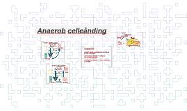 Anaerob celleånding