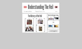Understanding the Viel