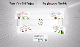 Parts of the Cell Project   By: Alexz and Dominic