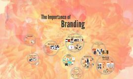 WEEK 9: The Importance of Branding