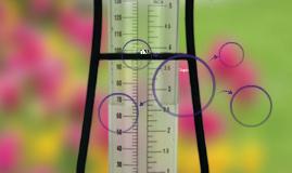 how a rain gauge