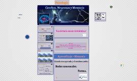 Cerebro, Neuronas y Memoria