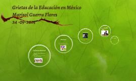 Grietas de la Educación en México