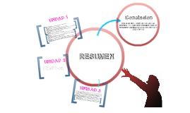 Copy of RESUMEN