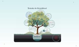 Copy of Tratado de Brundtland