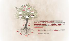 SU BUHARI DİSTİLASYONU YÖNTEMİ İLE ELDE EDİLEN ARDIÇ AĞACI M