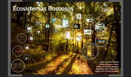 Ecosistema Boscoso