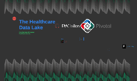 The Healthcare Data Lake