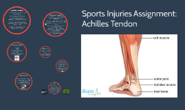Copy of Sports Injuries Assignment:
