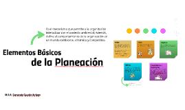 Elementos Básicos de la Planeación