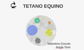 TETANOS EQUINO