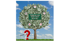 NSO Financial Aid Fall 2014