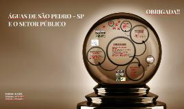 ÁGUAS DE SÃO PEDRO - SP E O SETOR PÚBLICO