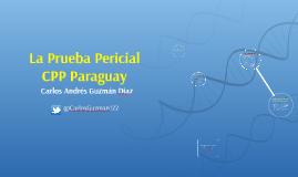 Prueba pericial Paraguay