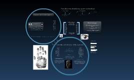 Copy of Biometric Identification Systems