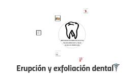 Erupción y exfoliación dental: