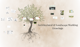 Copy of Architecture & Landscape Working Drawing