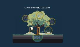 CENIT- GIMNASIO LOS ANDES