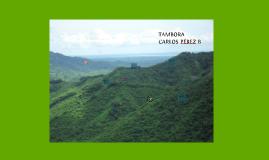 Copy of DANZA LA TAMBORA