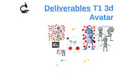 Deliverables T1 3d       Avatar