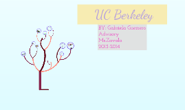 All About UC Berkely