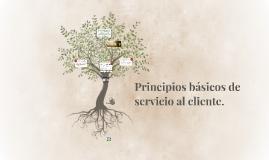Copy of Principios básicos de servicio al cliente.