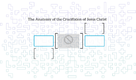 The Anatomy of the Crucifixion of Jesus Christ