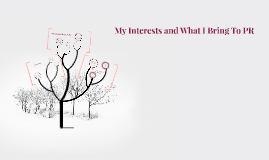 My Interests and What I Bring To PR
