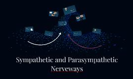 Sympathetic and Parasympathetic Nerveways