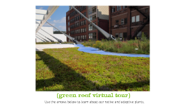 green roof virtual tour