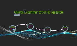 Animal Experimentation & Research